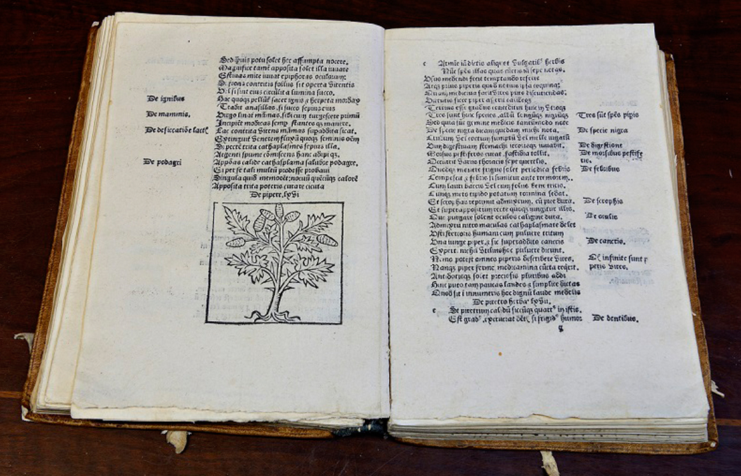 Biblioteca Renacentista