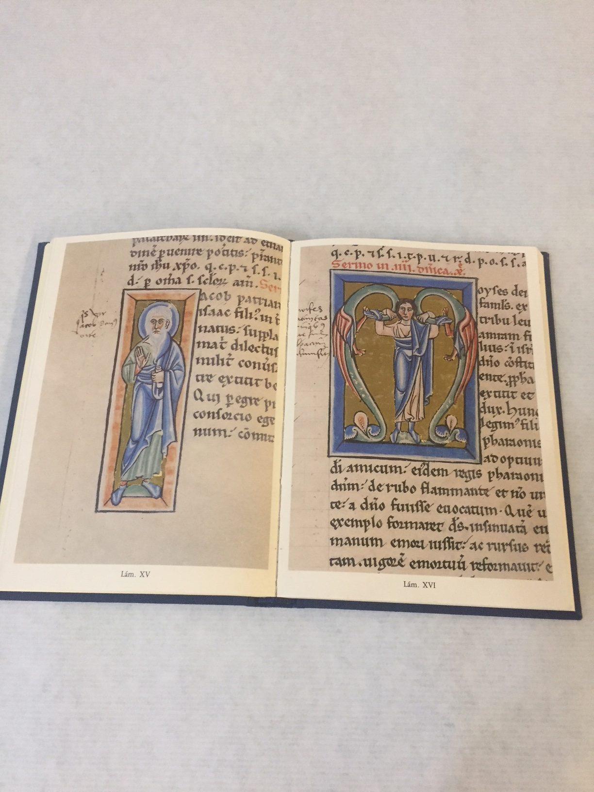 iconografía santo Martino